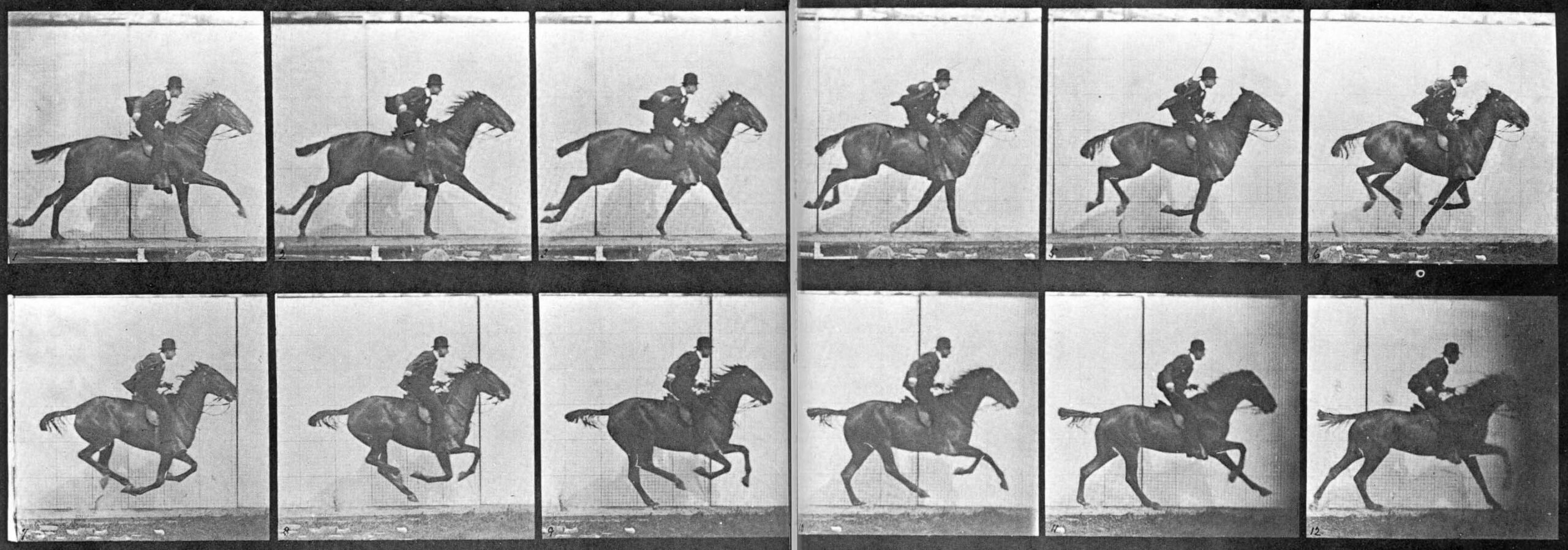 Sallie Gardner at a Gallop 1878 The Horse in Motion